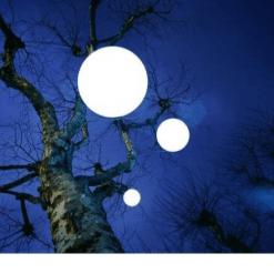 esfera con arbol